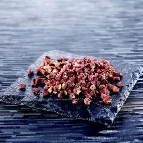 Baies de Sansho rouges mûres entières sur tige