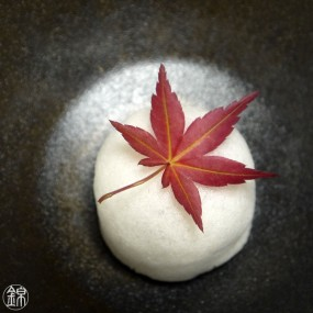 Feuilles d'érable japonais séchées Momiji