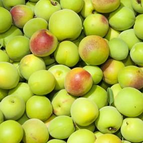 Graines de sésame torréfiées à la prune ume (0,4%) 1kg