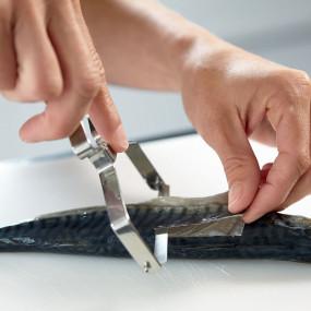Fileteur à poisson, forme économe