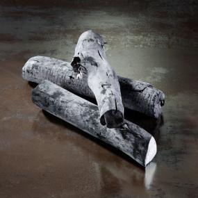 Maru Binchotan charcoal