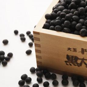 XXL black Tambaguro soybeans