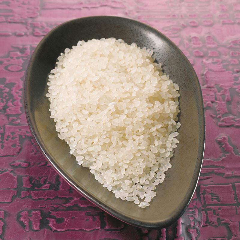 Koshihikari rice from Toyama Rice
