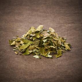 Mélange aux feuilles de Sansho à infuser