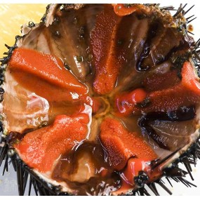 Sea urchins flavored soy sauce