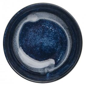Sashimi plate Tableware