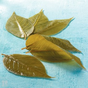 Salted Sakura cherry tree leaves - Short date Short best before dates