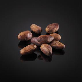 Fève de cacao de Colombie entières
