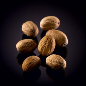 Feuilles de Magnolia séchées 29-36 cm, 100 pièces