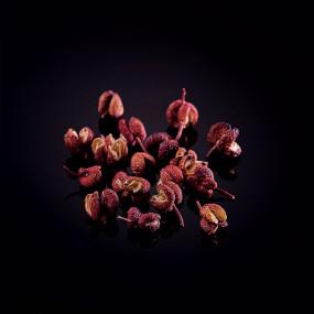 Red Sansho berries from Wakayama