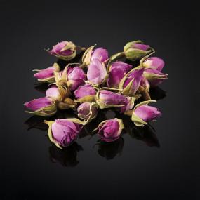 Boutons de roses d'Ispahan