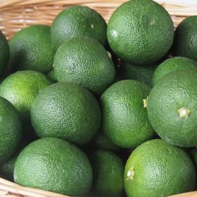 """Jus de Sudachi 'Citrus Sudachi"""""""