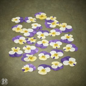 Dried edible viola fowers