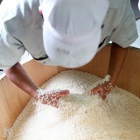 Miso blanc au pipatsu, poivre long de Ishigaki Jima