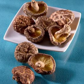 Shiitake Donko séchés petits Ø : 2.4 à 3.3 cm